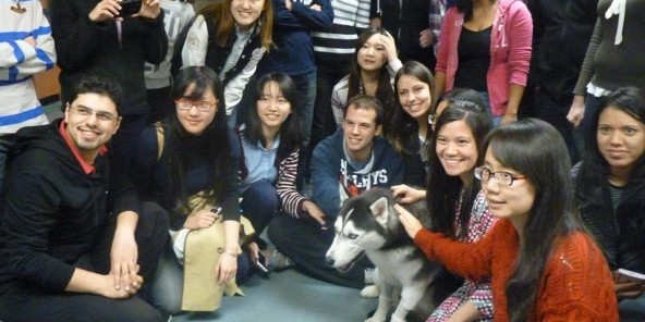 Husky-dog-Jonathan